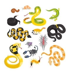 Flat snakes and other danger animals vector