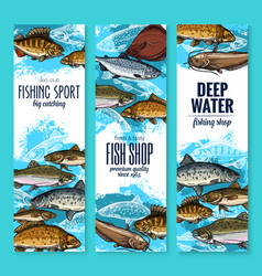 Sea fish banners for seafood or fishing design vector