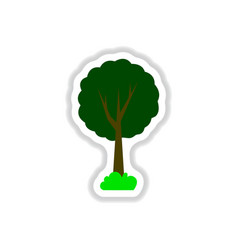 Set of labels with shadow tree icon tree vector