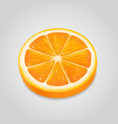 orange slice realistic ripe fruit 3d vector image