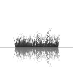 grass silhouettes background vector image