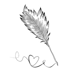 Doodle feather birds vector image vector image