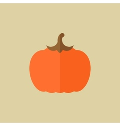 Pumpkin food flat icon vector