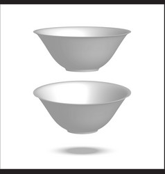 Realistic plate vector