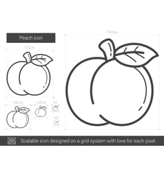Peach line icon vector