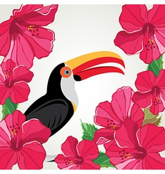 Toucan with beautiful flowers vector