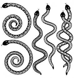 snake designs vector image