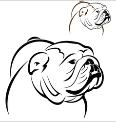 English bulldog 2 vector
