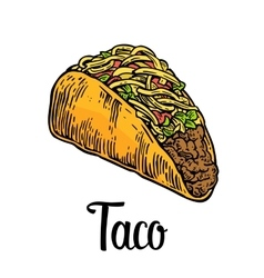 Tacos - mexican traditional food vintage vector image vector image