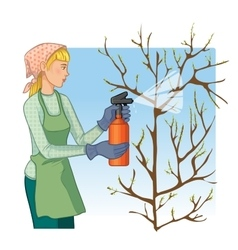 Woman spraying tree in garden with protection vector