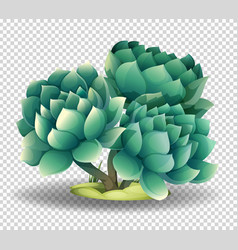 cactus flower on transparent background vector image vector image