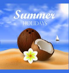 Coconut tropical nut fruit vector