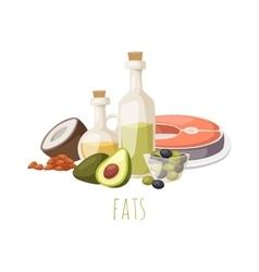 Good fats food vector