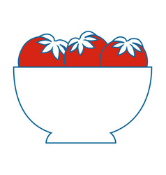 Isolated tomatoes bowl vector