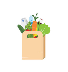 paper bag full of grocery vector image vector image