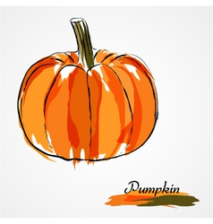 Pumpkin fruit vector