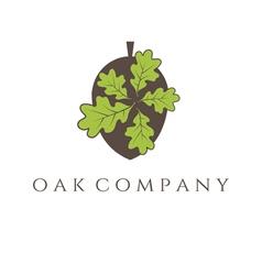 oak tree icon vector image