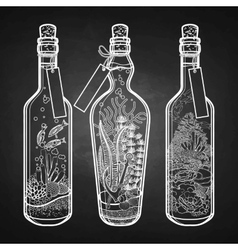 Ocean flora and fauna in bottles vector