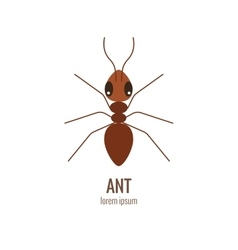 Colorfu cartoon ant logo vector