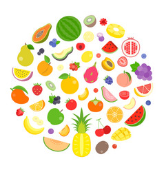 colourful fruits and berry vector image vector image