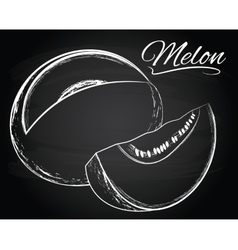 Melon on the chalkboard background vector