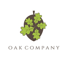 oak tree icon vector image