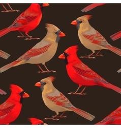 Seamless nothern cardinals vector