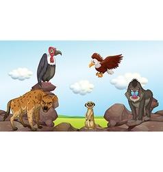 Wild animals standing on rocks vector image
