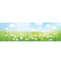Spring field landscape vector