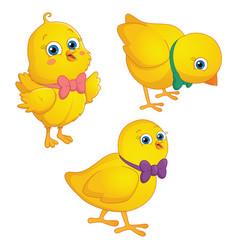 cartoon chick vector image vector image