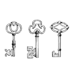 Engraving sketches of medieval keys vector