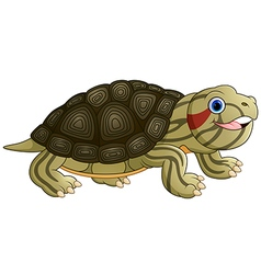 Cartoon baby cute turtle vector