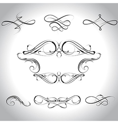 Curls vector
