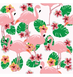 Flamingos two vector