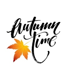 Autumn time seasonal banner design fal leaf vector