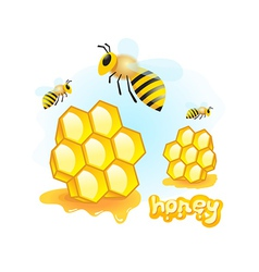 honey mead bee honeycomb element vector image vector image