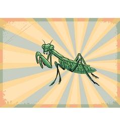 mantis vector image vector image