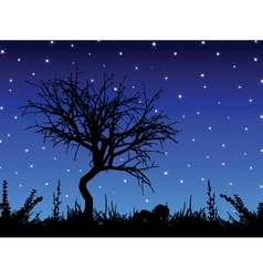 tree against starry sky vector image