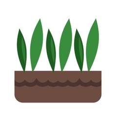 Grass pot vector