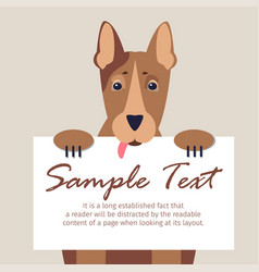 Doberman with signboard isolated vector