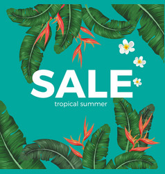 Sale tropical summer poster with green leaves and vector
