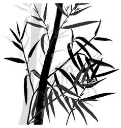 Bamboo leaf background The top of the bamboo vector image vector image