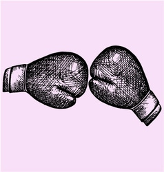 Pair leather boxing gloves vector image vector image