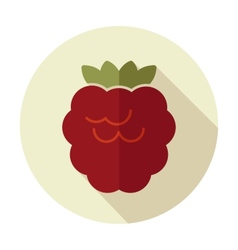 Raspberry flat icon with long shadow vector