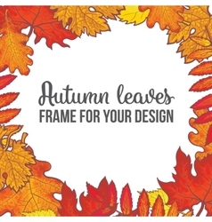 Round frame with fall leaves - maple oak rowan vector image