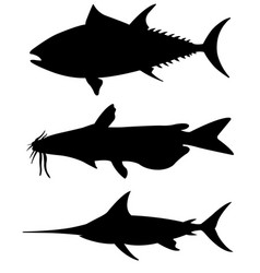 Set of different big fish silhouettes vector