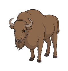 Color image of bison vector