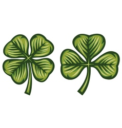 Clover with three and four leafs vector image