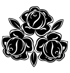 isolated of black and white roses vector image