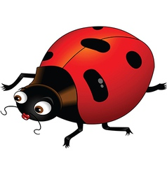 Ladybird cartoon vector image
